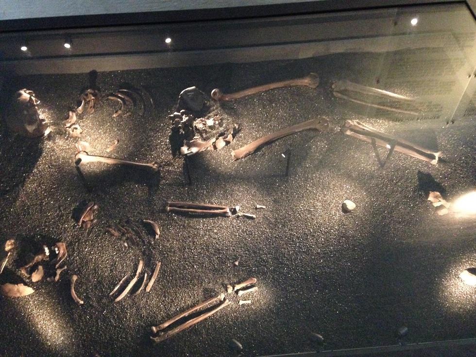 Museo delle Navi Vichinghe di Oslo 278452d1503492251-museo-delle-navi-vichinghe-di-oslo-dsc_1112.2