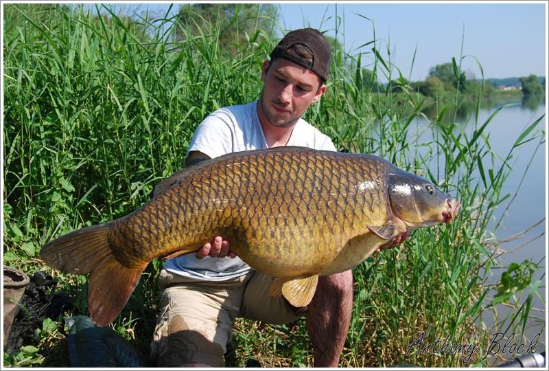 Nominations et photos de pêche - Page 2 DSC_0276