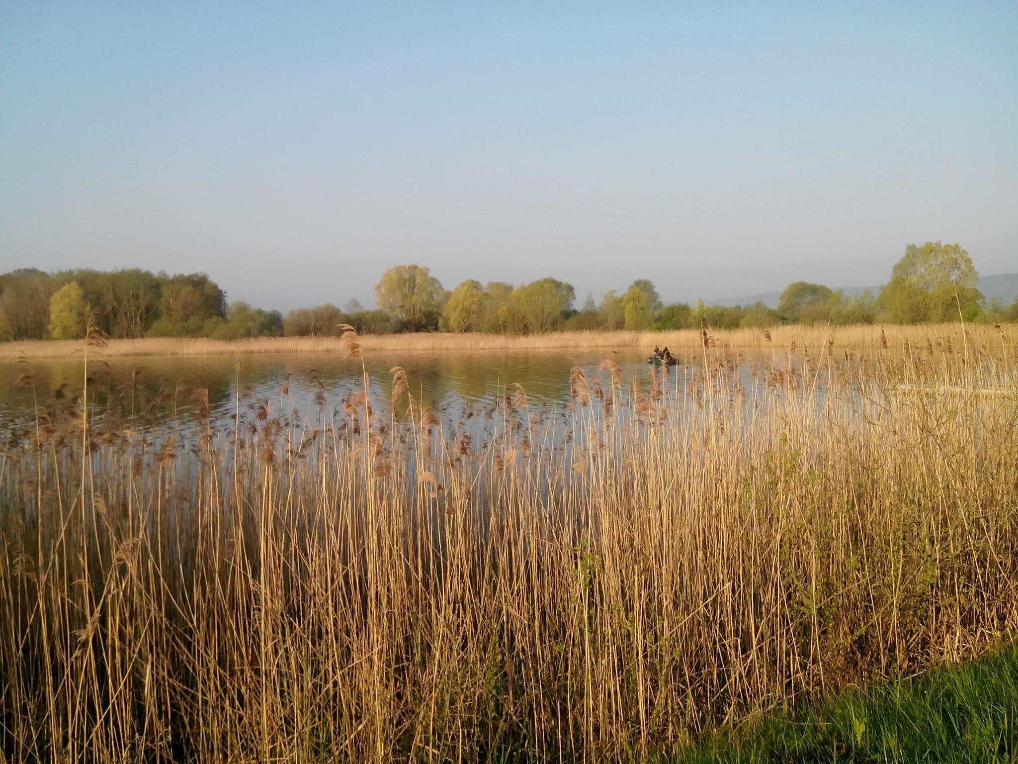 A la découverte du lac de Madine Image1
