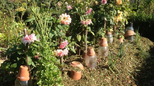 La permaculture renverse les dogmes de l'agronomie  traditionnelle Brf-04