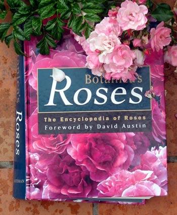 Sant Jordi Botanicas-roses-book