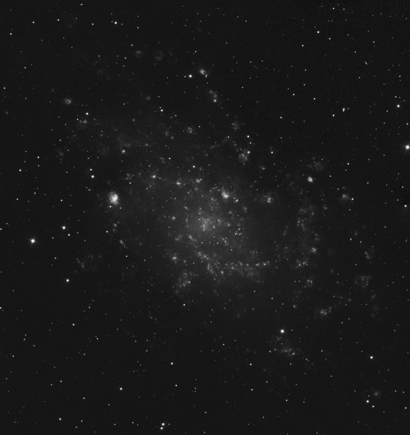 Mosaique M33 au RC M33_h_web