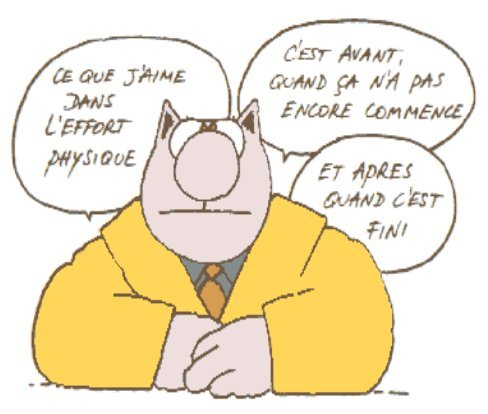 resolutions 2013 Humour-lechat-sportif