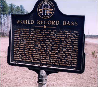 Después de 77 años sale un monstruo de Lobina / Black Bass Perry4