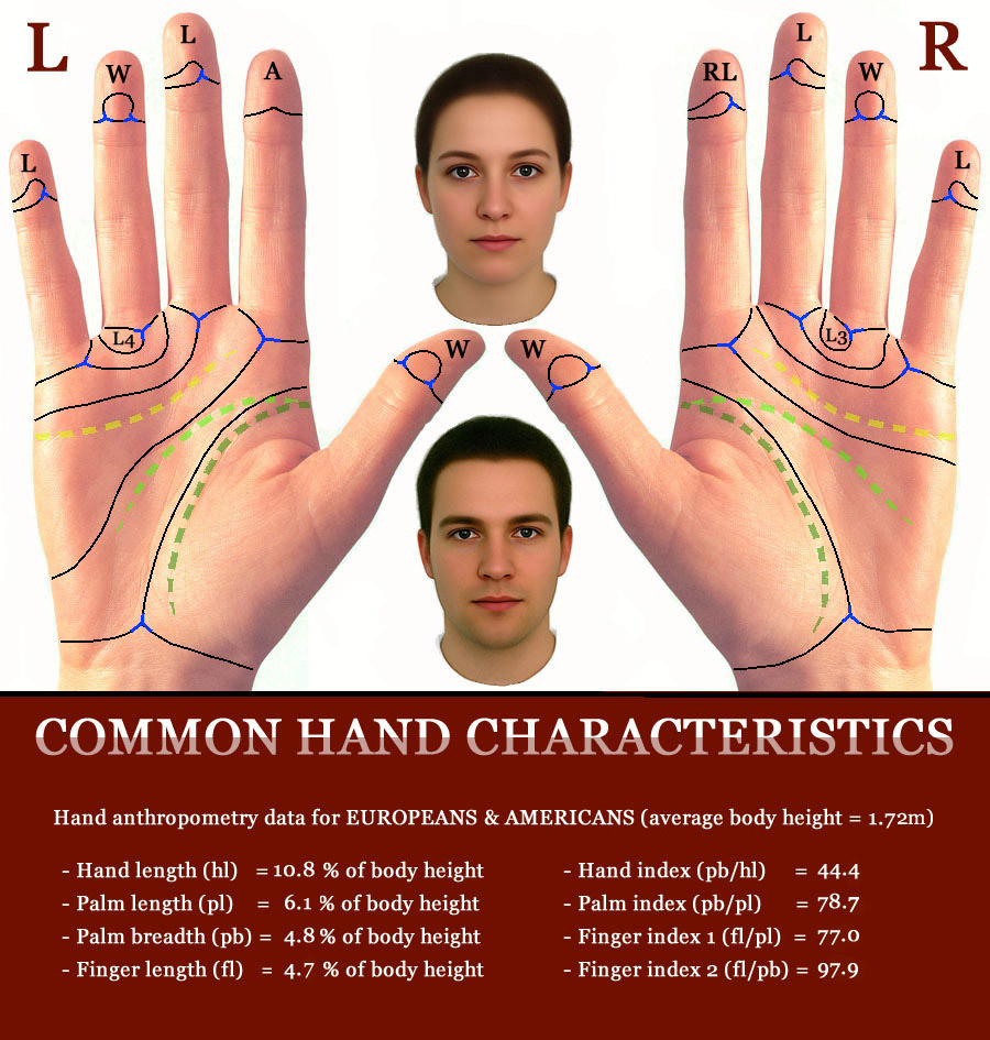 Which country has the largest hands in the world? Common-hands-phantom-picture