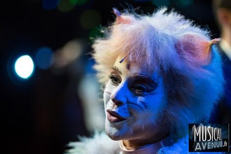 qui suis je Martin 1er juillet trouvé par Martine - Page 2 Cats_emmanuelle-itw
