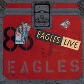 eagles 25381