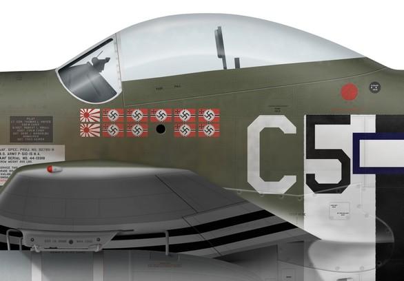 "[TAMIYA -1/32] P-51D 44-13318 ""Frenesi"" 357thFG 364th FS Colonel Thomas L Hayes Det1"