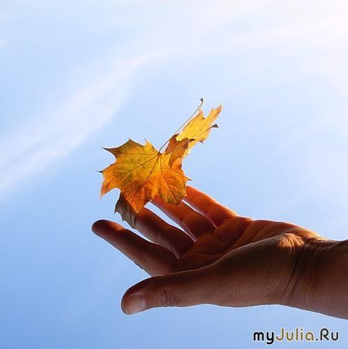 Ода Осени - Страница 2 83616_3971-650x650