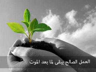 تحية الإسلام فى منتدى واحة الإسلام 05