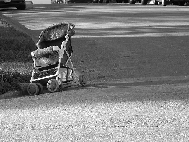 "Vaccine Damage Awareness ""Empty Stroller Walk"" March 5, 2017 Empty-stroller-walk"