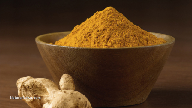 Turmeric able to 'smart kill' cancer cells... chemotherapy and radiation now medically obsolete Turmeric-Root-Curcumin-Powder
