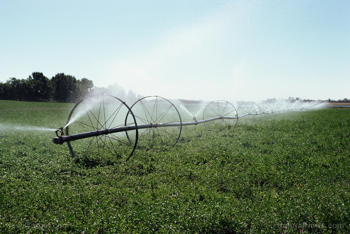 For the first time, bee-killing neonicotinoid pesticides are now being found in drinking water Epa-Water-Supply