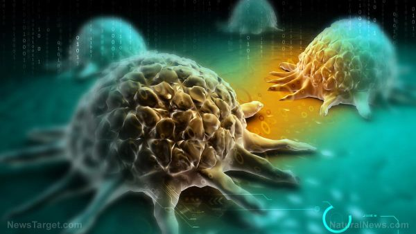 Chemotherapy found to activate cancer tumor growth mechanism in the body, MULTIPLYING cancers everywhere, usually killing the patient Cancer-Cell-Background-Disease-Abstract-Metastasis-Defense-e1498144787274