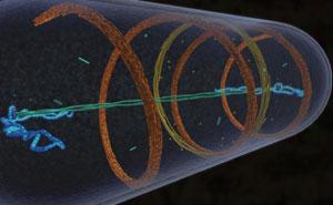 The astonishing  language written on microtubules, amazing evidence of  design 451124a-i1.0