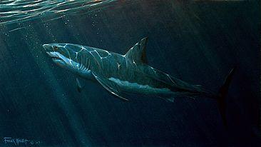 [RP] Sur le Requin Jaune - Page 6 1600_greatwhite72