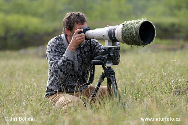 Red County Новинари [ИНФОРМАЦИЯ]  Photographer-2671