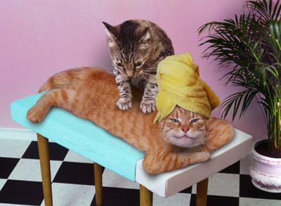 МАШАЛА! Massage