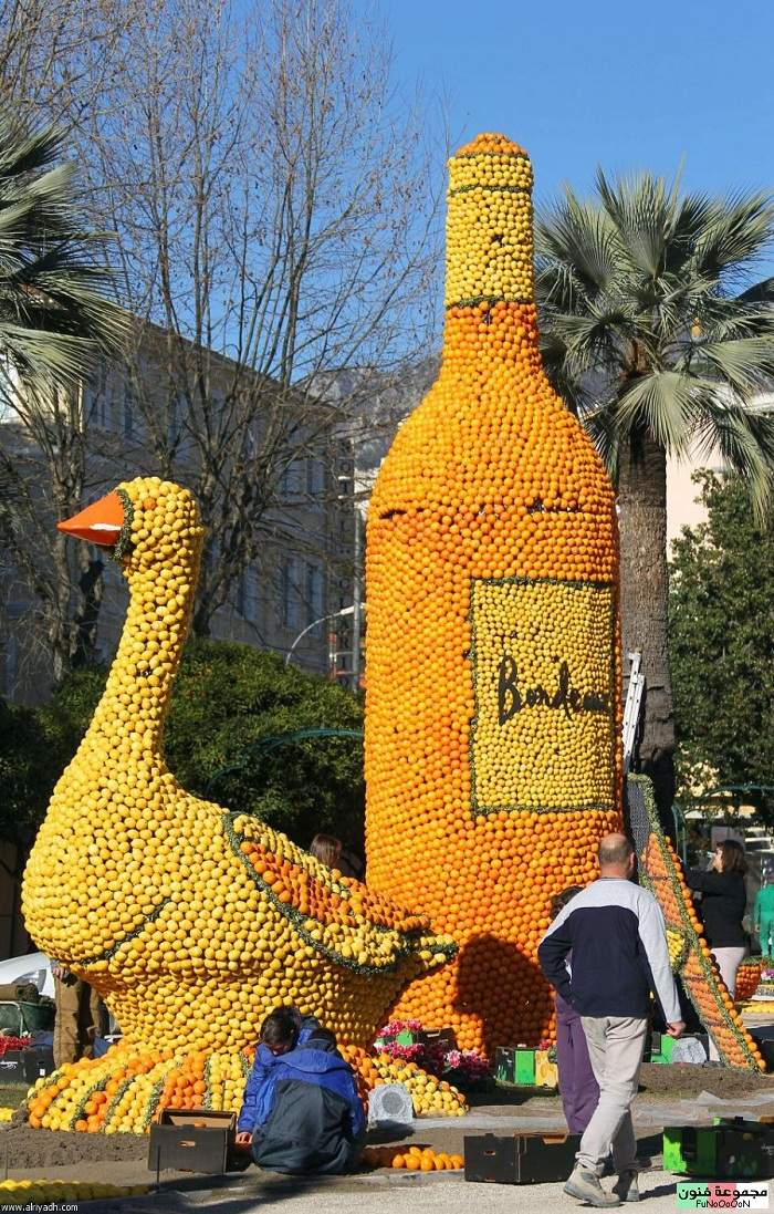 مهرجان الليمون 1329516832962