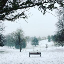 Enviar mensaje privado Beechwood-Park-snow-March-2018256x256