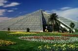 Les Parcs & Jardins de la Ville de Nice T_Nice_149