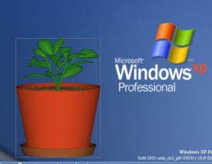 نباتات حقيقية على شاشتك اسقيها و اعتني بها كانها حية رائع جدا 7857