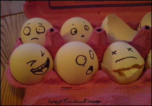 فن الرسم على......؟؟؟ Egg-11