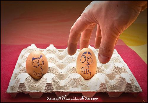 فن الرسم على......؟؟؟ Egg-4