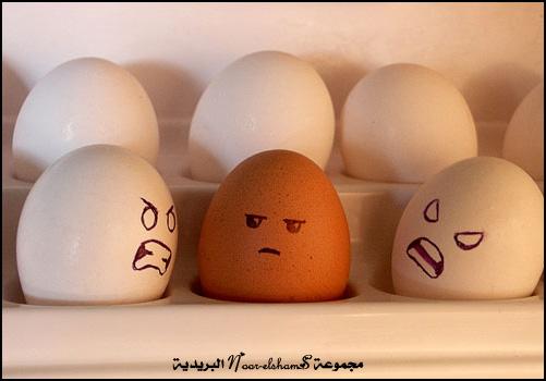فن الرسم على......؟؟؟ Egg-6