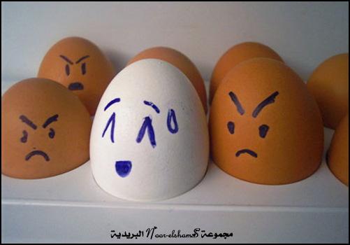 فن الرسم على......؟؟؟ Egg-7