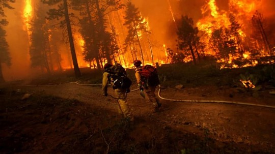 Santa Rosa Wildfire Burns 2,000 Acres, Destroys Numerous Homes And Forces Evacuations; Only 20% Contained SRfire-540x303