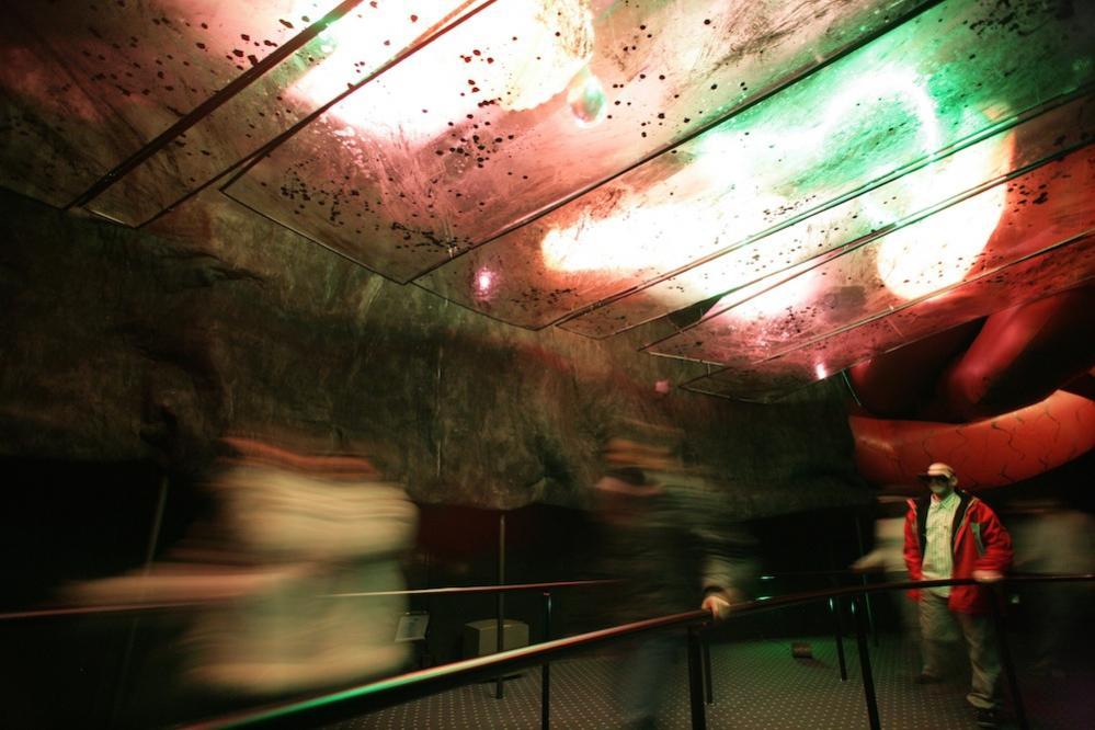 La Citadelle du Vertige (Pavillon 360°) - (2008-2010) - Page 14 Ecloseriedescocons