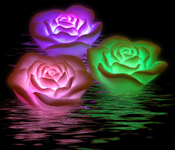 LO QUE DICTA CHRONOS... ENTRE SUEÑOS & OLVIDOS Rosas-flotante-que-brillas