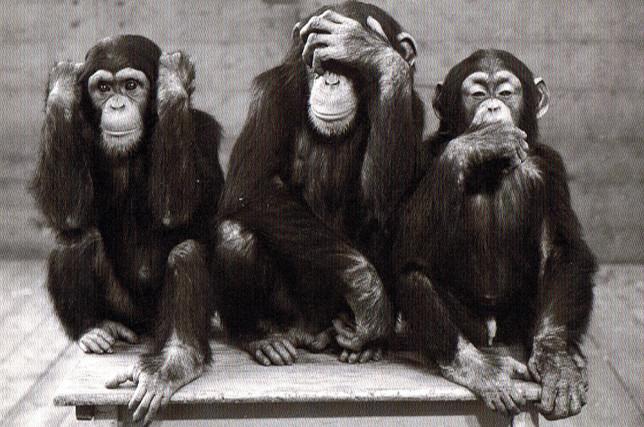 où allons nous ? Une page est tournée, laquelle ? Trois-singes-644x427
