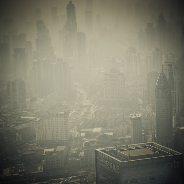 Kroz maglu...  Photo8613