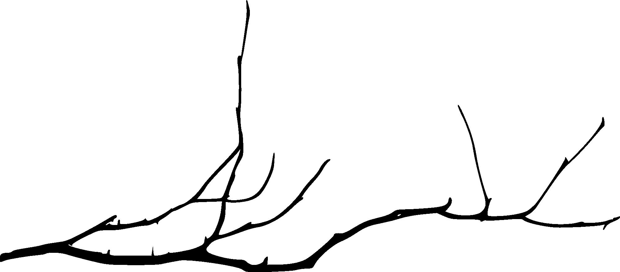 Creación de barras separadoras para poner en los post Simple-tree-branch-4