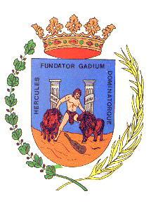 Regimiento de Infanteria Ligera Nº41 ''El Cautivo' Cadiz