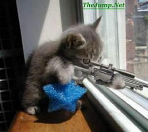 unnouveau systeme pour detecter les snipers Chat-sniper