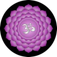 Les 7 chakras  Reiki14