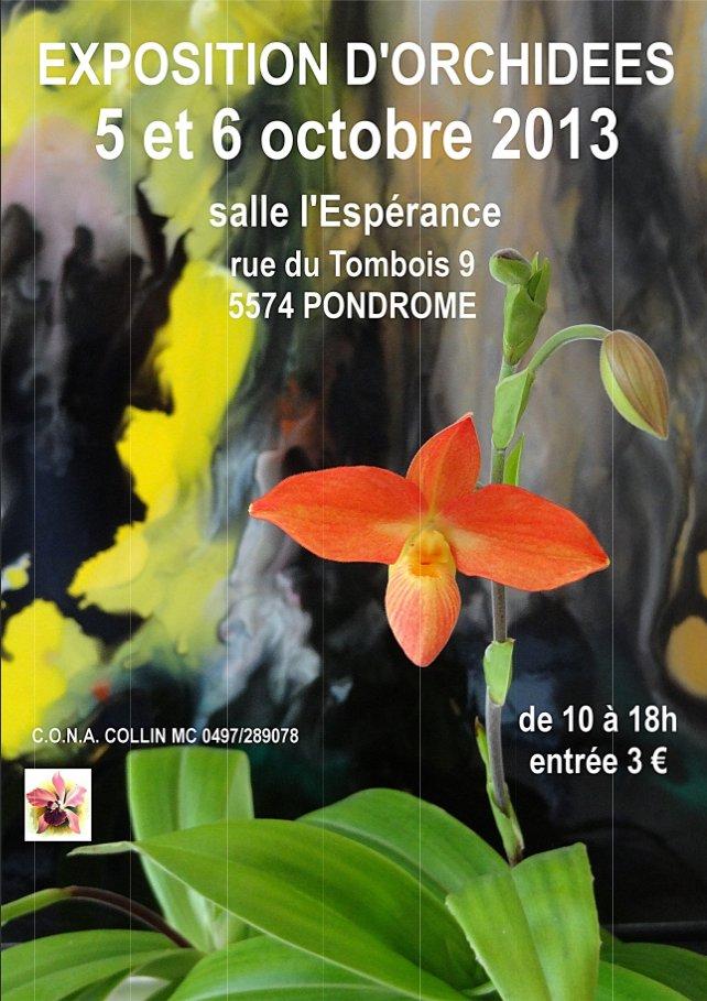 Exposition Orchidées à Pondrome dans les Ardennes Belges - 5 & 6 octobre 2013 Expo-orchidees-pondrome-2013