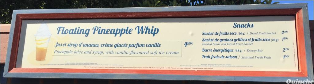 Pineapple Whip: un en-cas glacé inspiré du Dole Whip américain - Page 10 Floating_PineApple2