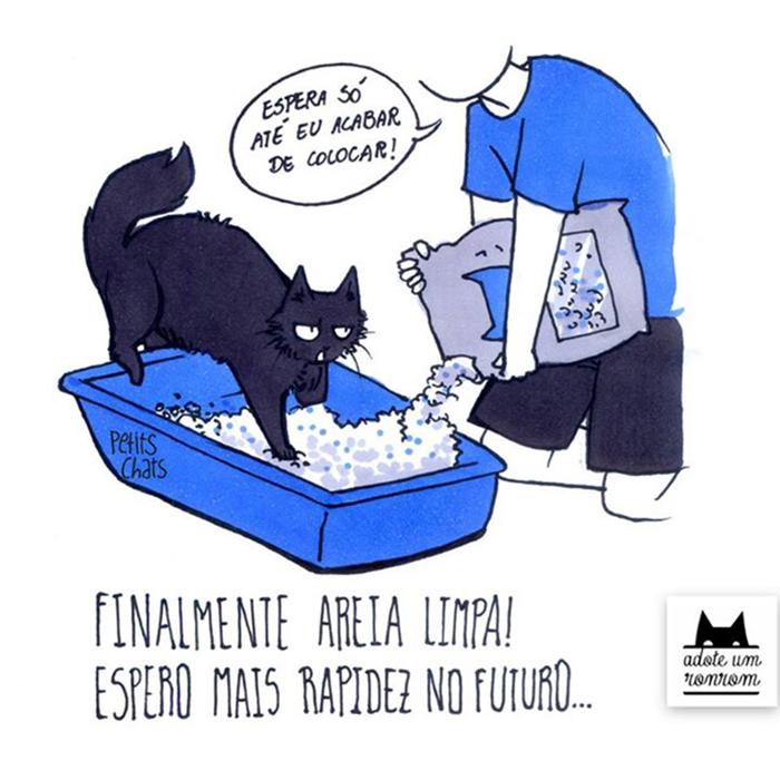 Tirinhas memes - Página 5 Como-diria-gato4