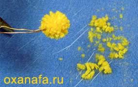 Креатив из помпонов 1299012177_mimosa-10