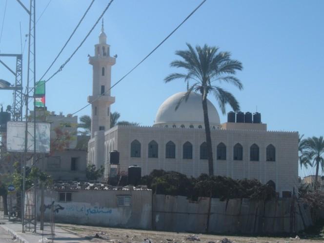 صور عن غزة وضواحيها - صفحة 2 Gaza-46836