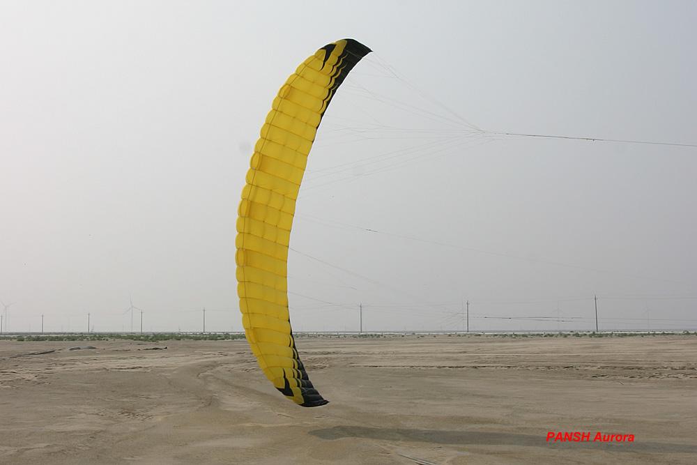 Pansh Aurora 241_20120726100922_1
