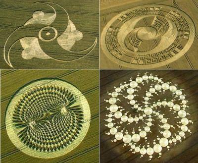 Crop Circles Crop_circles_complexes
