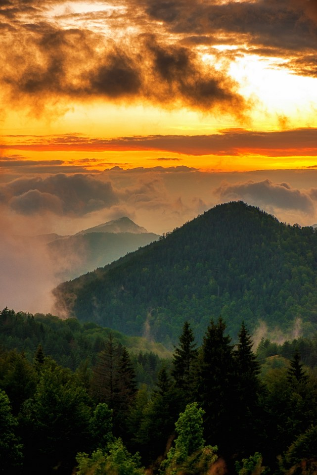 Park prirode Mokra Gora Slika143