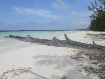 Non solo rivoluzione... le spiaggie paradisiache di Cuba Pilar32