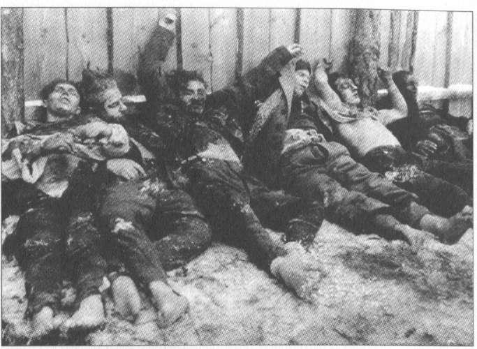 The Holocaust/Holohoax - Page 5 Dzuko_dienorastis-51