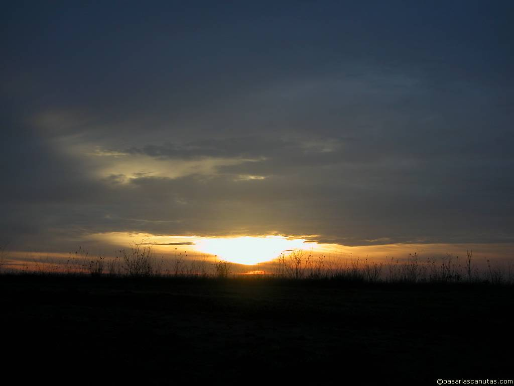 Saludando al dia....Amaneceres - Página 2 Fotos_de_paisajes_amanecer_47